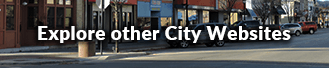 Other City Websites
